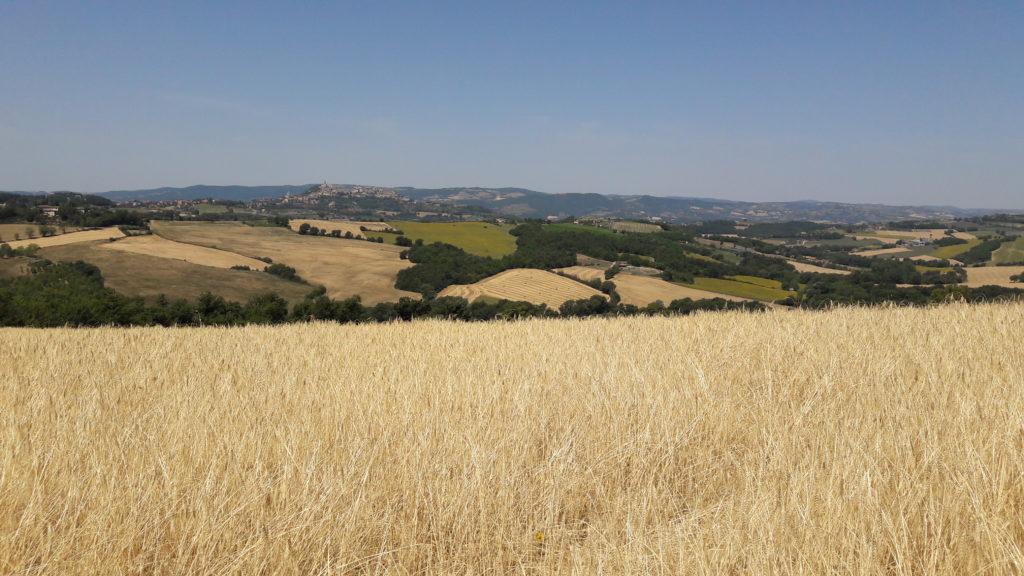 Farchioni ed il suo secolare amore per l'Umbria